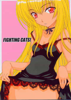 FIGHTING CATS!